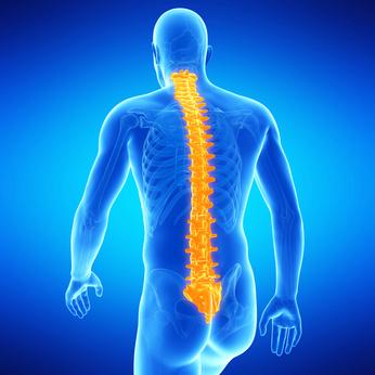 terapia posturale
